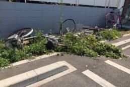 台風と自転車