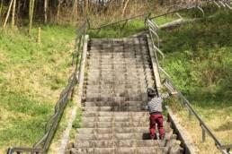 一歩一歩階段を登る